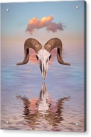 Spirit Goat Acrylic Print by Jerry McElroy