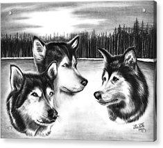 Spirit Guides  Acrylic Print by Peter Piatt