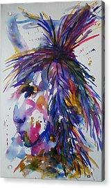 Spirit Of Horsefeather Acrylic Print