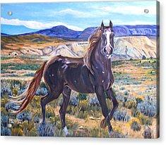 Spirit Of The Basin Acrylic Print