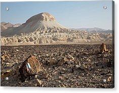 Spirit Of The Desert Acrylic Print by Yoel Koskas