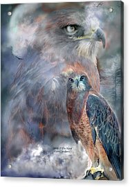 Spirit Of The Hawk Acrylic Print by Carol Cavalaris
