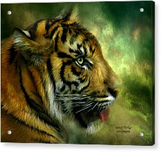 Spirit Of The Tiger Acrylic Print by Carol Cavalaris