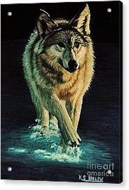 Spirit Of The Wild Acrylic Print by Kevin Ballew