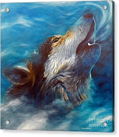 Spirit Of The Wolf Acrylic Print by Brian  Commerford