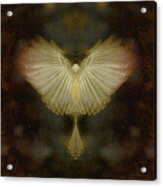 Spirit Rising Acrylic Print by WB Johnston