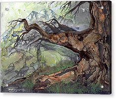 Acrylic Print featuring the painting Spirit Tree by Sherry Shipley