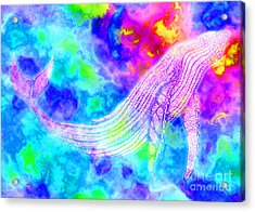 Spirit Whale 3 Acrylic Print by Nick Gustafson
