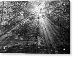 Spiritual Picnic Acrylic Print