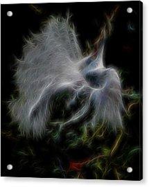 Spiritual Plumage Acrylic Print by William Horden
