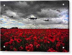 Spitfires And Blenheim Acrylic Print