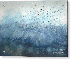 Splash   Acrylic Print by Janet Hinshaw