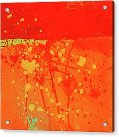 Splash 6 Acrylic Print by Jane Davies