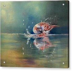 Acrylic Print featuring the painting Splash by Ceci Watson