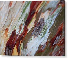 Splash Of Amber Acrylic Print by Vivien Rhyan