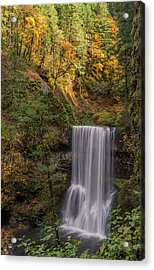 Splash Of Autumn Acrylic Print by Loree Johnson