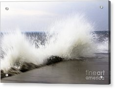 Splash Acrylic Print by Tara Lynn