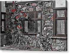 Splashes Of Red Acrylic Print