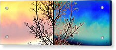 Acrylic Print featuring the digital art Splendid Spring Fusion by Will Borden