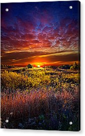Splendiferous Acrylic Print by Phil Koch