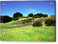 Splendor In The Grass Acrylic Print by Kathy Yates