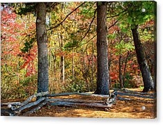 Split Rail Fence And Autumn Leaves Acrylic Print