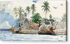 Sponge Fisherman In The Bahama Acrylic Print by Winslow Homer