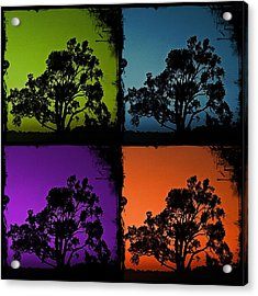 Acrylic Print featuring the photograph Spooky Tree- Collage 1 by KayeCee Spain