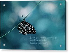 Spread Your Wings Acrylic Print by Maria Angelica Maira