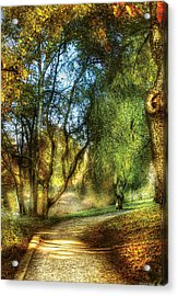 Spring - Landscape - My Journey My Path Acrylic Print by Mike Savad
