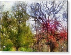 Spring 2015 Trees Pa 02 Acrylic Print by Thomas Woolworth