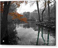 Spring Alive Acrylic Print by Blake Yeager