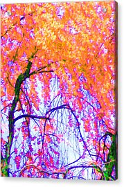 Acrylic Print featuring the photograph Spring Alive by Susan Carella