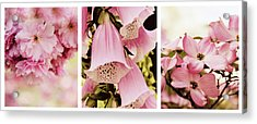 Acrylic Print featuring the photograph Spring Assemblage Triptych by Jessica Jenney