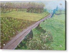 Spring At The Railroad Cut Gettysburg Acrylic Print by Joann Renner