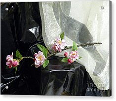 Spring Awakening With Pink Cherry Blossoms Acrylic Print