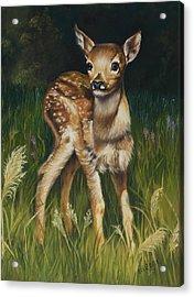 Spring Baby Fawn Acrylic Print