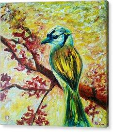 Spring Bird Acrylic Print by Rashmi Rao