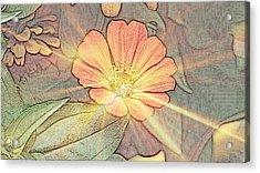 Spring Bling Acrylic Print by Maria  Wall