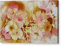 Spring-blooms Acrylic Print by Nancy Newman