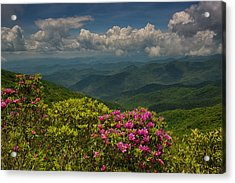 Spring Blooms On The Blue Ridge Parkway Acrylic Print