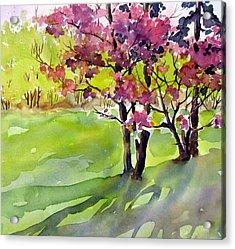 Spring Blossoms Acrylic Print by Chito Gonzaga