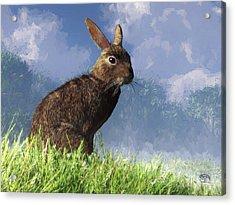 Spring Bunny Acrylic Print by Daniel Eskridge