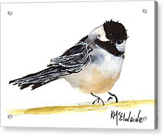 My Little Chickadee Bird Art Watercolor And Gouache And Ink Painting By Kmcelwaine Acrylic Print