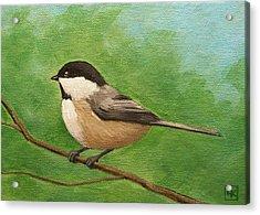Spring Chickadee Acrylic Print by Lisa Kretchman