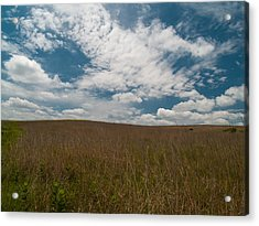 Acrylic Print featuring the photograph Spring Creek Prairie by Joshua House