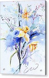 Spring Daffidolds Acrylic Print