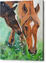 Spring Day In The Meadow Acrylic Print