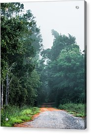 Acrylic Print featuring the photograph Spring Dirt Road by Shelby Young