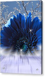 Spring Emergence  Acrylic Print by Cathy  Beharriell